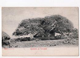 Ph3 - ERYTHREE -  Sicomero Di Terramni - Erythrée