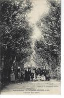 """44 - St ETIENNE DE MONTLUC - La Haye Mahéas - T.B. Vue Animée Rare """" Charmille Dans Le Parc """" - Saint Etienne De Montluc"""