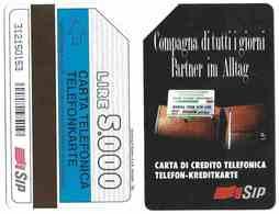 *G AA 29 C&C 1263 SCHEDA USATA COMPAGNA 31.12.95 5 TEP - Italia