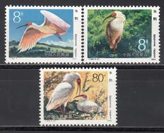 1984  Michel Nº 1934 / 1936  MNH, Aves, Ibis Crestado (Nipponia Nippon) - 1949 - ... Volksrepublik