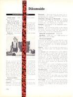 Gemeente Diksmuide - Org. Knipsel Uit Magazine 1958 - Geschiedenis - Folklore - Nijverheid - Handel + Grondplan - Vieux Papiers
