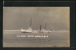 AK Fischerboot SS Wren In Canso Harbor Im Eis Eingefroren - Fishing Boats