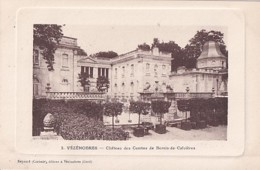 VEZENOBRES          CHATEAU DES COMTES DE BERNIS DE CALVIERES - Autres Communes