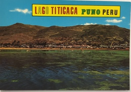 (783) Peru - Puno - Lago Titicaca - Pérou