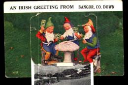 Bangor Gnomes Playing Poker/cards Novelty Slip-out Postcard-iRISH THEME - Irlande