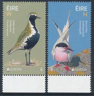 """IRELAND/Irland/Eire EUROPA 2019 """"National Birds"""" Set 2v** - 2019"""