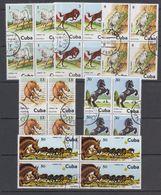 Cuba 1981 Horses 6v Bl Of 4 Used (cto) (44142) - Cuba
