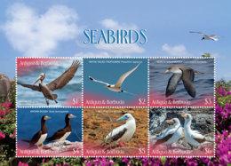 Antigua And Barbuda 2019 Fauna  Seabirds  I201901 - Antigua And Barbuda (1981-...)