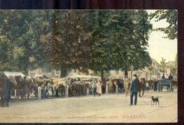 Haarlem - Paardenmarkt Dreef - 1907 - Kleinrond Stmpl Twisk - Haarlem