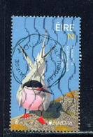 IRELAND  -  2019  Europa - Birds  'N'  Used As Scan - 1949-... Republic Of Ireland