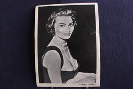 Sp-Actrice / Sophia Loren, Est Une Actrice Italienne, Née Le 20 Septembre 1934 à Rome. / Ph-13x18 Cm - Artistes