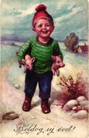 Pigs, Boy Holding Two Little Pigs In His Arms, New Year, Funny Old Postcard - Pigs
