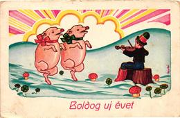 Pigs, Dancing Pigs With A Musician, New Year, Old Postcard - Pigs