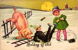 Pigs, Pig And Chimney Sweeper Having An Accident On The Fence, New Year, Old Postcard - Pigs