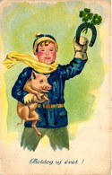 Pigs, Boy Holding A Pig In His Arms, New Year, Old Postcard - Pigs