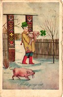Pigs, Boy With Pigs At The Gate, Signo: Bacsa J., New Year, Old Postcard - Pigs