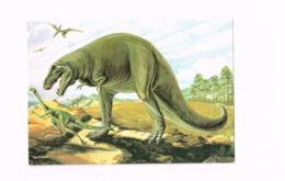 Tyrannosaurus Rex. - Animales