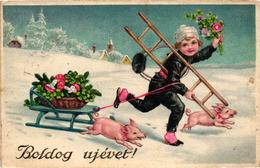 Pigs, Mushroom, Chimney Sweeper With Little Pigs And A Sled, New Year, Old Postcard - Pigs