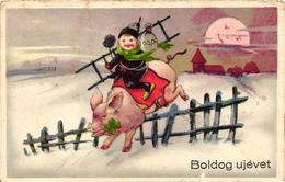 Pigs, Chimney Sweeper Jumping Over The Fence On A Pig, New Year, Old Postcard - Pigs
