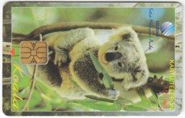 INDONESIA A-301 Chip Telekom - Animal, Koala - Used - Indonesien