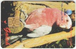 INDONESIA A-316 Chip Telekom - Animal, Bird, Parrot - Used - Indonesien