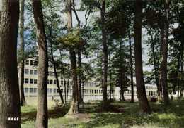 CPSM Grand Format 3B MONTARGIS (Loiret) Le Lycée En Foret  Colorisée RV  Edition MAGE  J DERENNE - Montargis