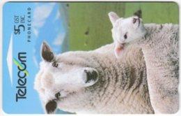 NEW ZEALAND A-818 Magnetic Telecom - Animal, Sheep - 222BO - Used - Neuseeland