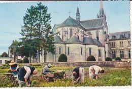 """CSM - 57. SOLIGNY LA TRAPPE - """"jardinage"""" - Autres Communes"""