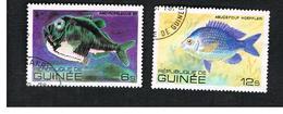 GUINEA -  SG 1031   -  1980  FISHES  - USED ° - Guinea (1958-...)