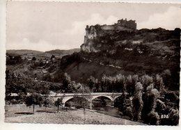 REF 379 : CPSM 81 PENNE Le Pont Et Le Chateau Tarn - Otros Municipios