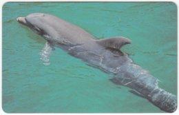 ZAMBIA A-082 Magnetic Telecom - Animal, Sea Life, Dolphin - FAKE - Zambia