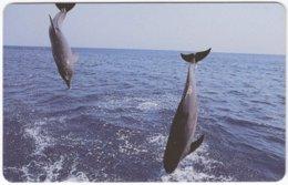 ZAMBIA A-083 Magnetic Telecom - Animal, Sea Life, Dolphin - FAKE - Zambia