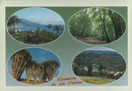 Spanien - La Palma - U.a. Garafia - 1999 - La Palma