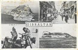 Moto  GSP 4 Avec Singes à Bord à Gibraltar  Timbrée Gibraltar Vers La Mazeraie Joué Les Tours 1958 - Motos