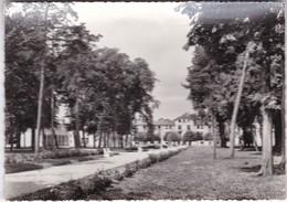 78 / Château De MAGNANVILLE. - Maison De Retraite. L'Avenue De Magnanville Et Le Pavillon Central. - - Magnanville