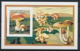 Centrafrique 1996 Mushrooms Champignons Amanta Caesara Imperf MNH - Champignons