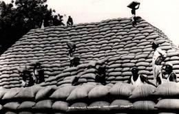 CPA - NIGERIA Du NORD - Pyramide  ... - Nigeria