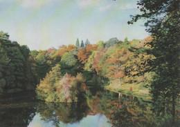 Postcard - Royal Botanic, Kew - Wakehurst Place, C1972 - Horsebridge Woods, Treetops Unused Very Good - Unclassified