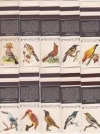 POCHETTE D'ALLUMETTE - Matchcovers Matchbook From Portugal - BIRDS BIRD - OISEAUX - COMPLET SET X 16 - Matchbox Labels