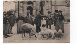56- Une Foire  Dans Le Morbihan ( Vente D'une Famille De Porcs)  N° 2920 Ed Villard CPA - Non Classés