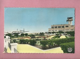 CPSM Petit Format -  Tunisie - Tunis - 29 - L'Houlna  -(avion ) - Tunisie