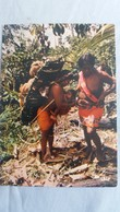 CPSM GUYANE PORTEUSES AUX SEINS NUS EN FORET ED JEAN CHARLES 8021 - Guyane