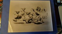 """PHOTO.ORIGINALE Du Dessin Animé De Walt Disney""""Blanche Neige Et Les 7 Nains. 1938 (tirage Argentique) - Photographie"""