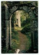 Villers La Ville - Ruines De L'Abbaye - Grand Portique Et Tour Des Rois De Bohème - Villers-la-Ville