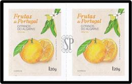 Portugal 2019 Algarve Alentejo Laranja Laranjeira Orange Naranja Tree Flora - Frutta