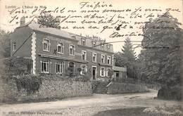 Lustin - L'Hôtel Du Midi (Héliotypie De Graeve, 1907) - Profondeville