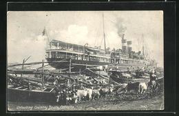 AK Calcutta, Unloading Country Boats, Dampfer An Küste, Blick Auf Kühe - Inde