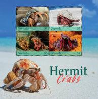 Grenada 2019  Fauna  Hermit Crabs  I201901 - Grenade (1974-...)