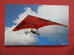 Delta Wing Kite        Florida Cypress Gardens ---------- -ref    3550 - Other
