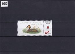 BUZIN - Grèbe Huppé** Quinzaine De La Nature - Namur 13-09-2014 - 1985-.. Birds (Buzin)